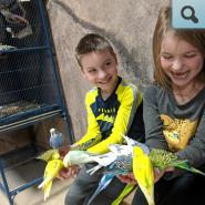 Students with parakeets