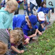 children looking at plants