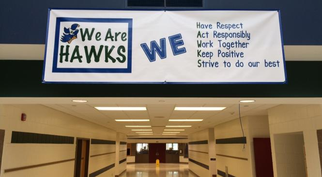 We Are Hawks banner